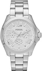 Fossil AM 4509