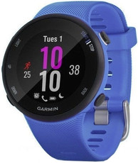 Garmin Forerunner 45S Optic Berry