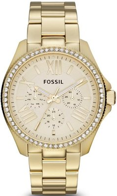 Fossil AM 4482