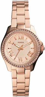 Fossil AM 4578